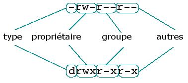 [Structure des permissions d'un fichier et d'un répertoire]